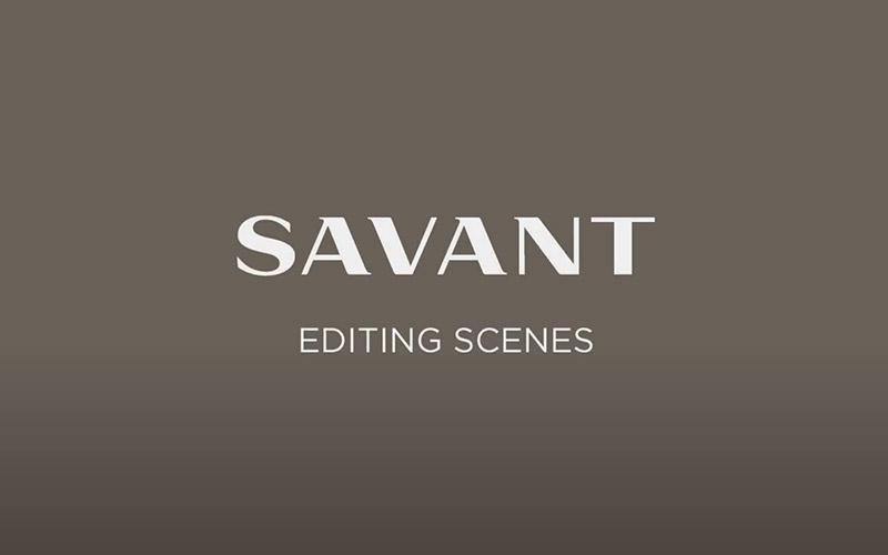 Savant Pro App - Editing a Savant Scene